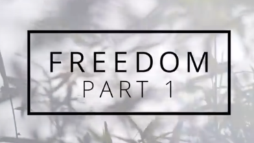 NEW VIDEO | Freedom Part One