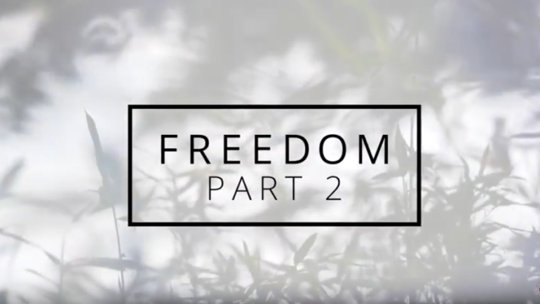 NEW VIDEO | Freedom Part Two